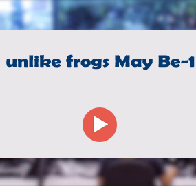unlike frogs May Be-1